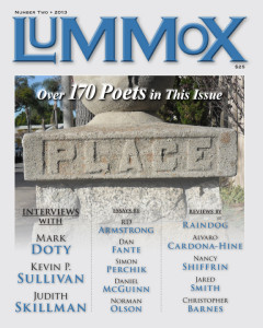 LUMMOX#2cover